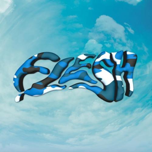 FLESH's avatar