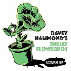 Smelly Flowerpot on Cambridge 105