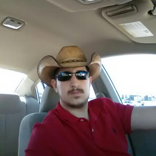 Raul Fernandez's avatar