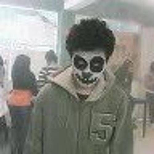 Luis Rodrigo Martínez's avatar