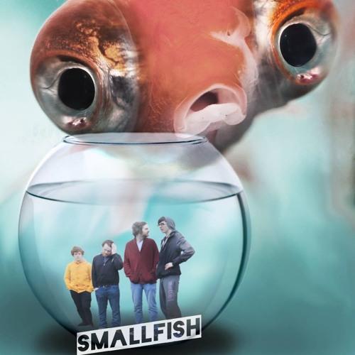 Small Fish's avatar