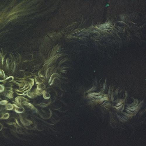 xumetanybyt's avatar