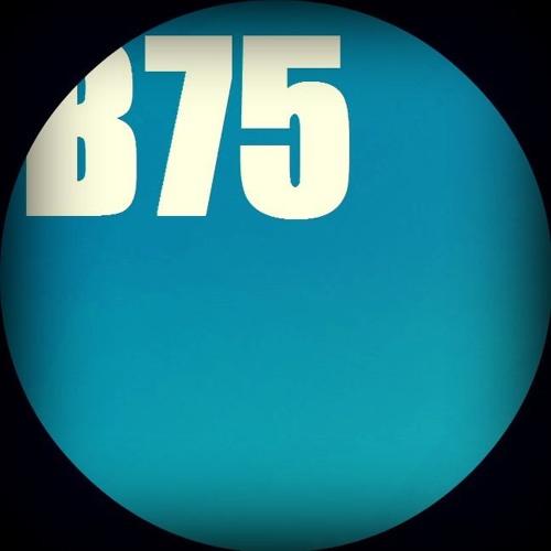 B75 Recordings's avatar