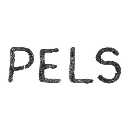 Pels's avatar