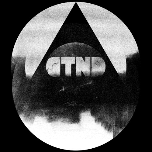 D  T  N  D's avatar