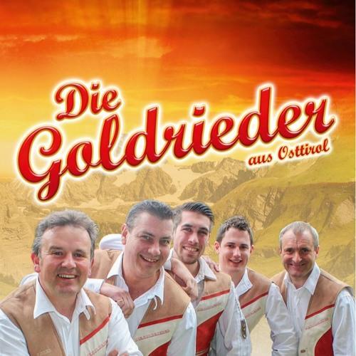 DieGoldrieder's avatar