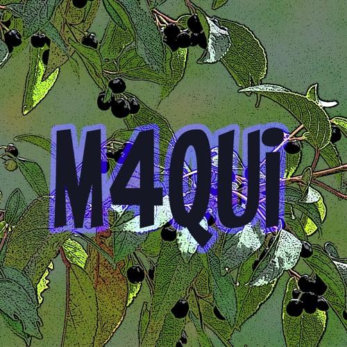 M4qui's avatar