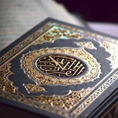 قرآن كل يوم