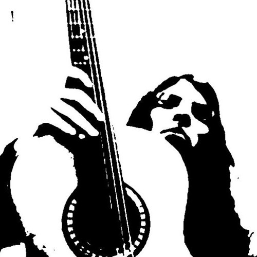 Bernard Machado's avatar