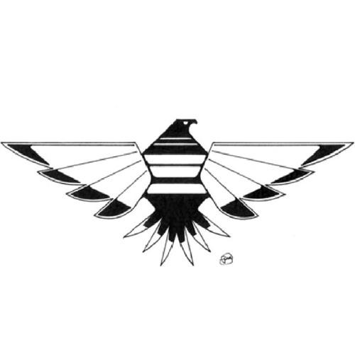 Thunderbird's avatar