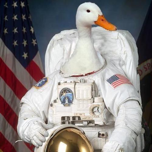 SpaceDuck123's avatar