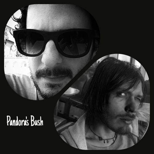 Pandora's Bush's avatar