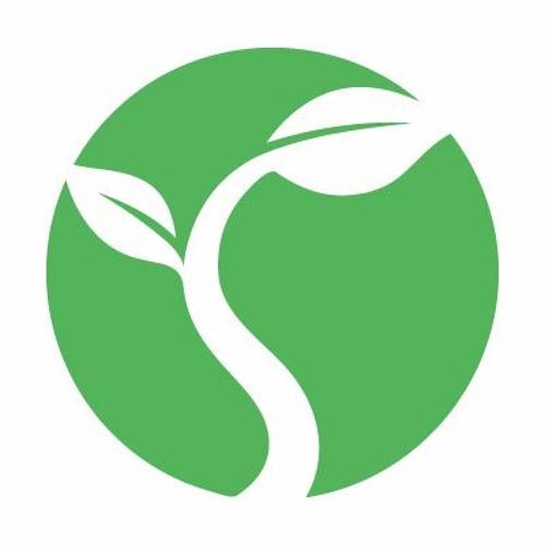 Seedbed's avatar