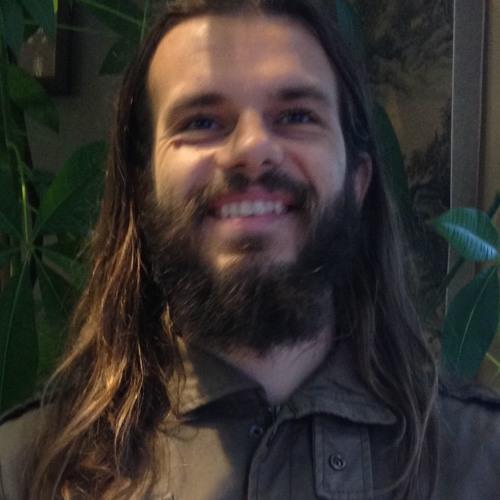 Alex Trifan's avatar