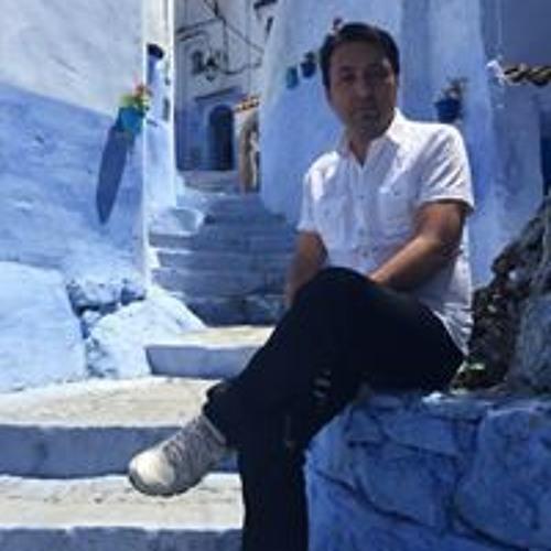 sairzamanlar's avatar