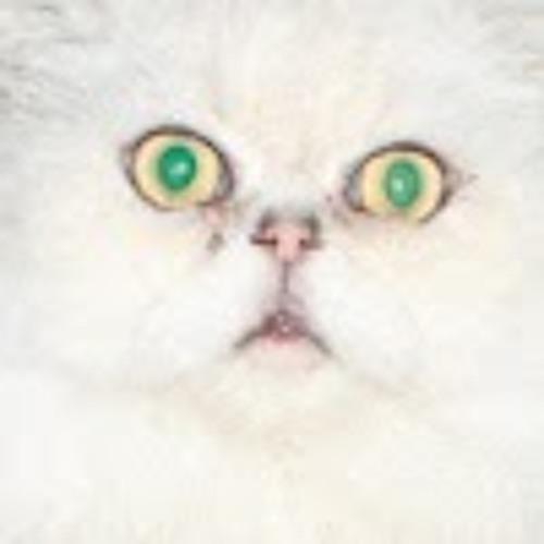 Max Wowch's avatar