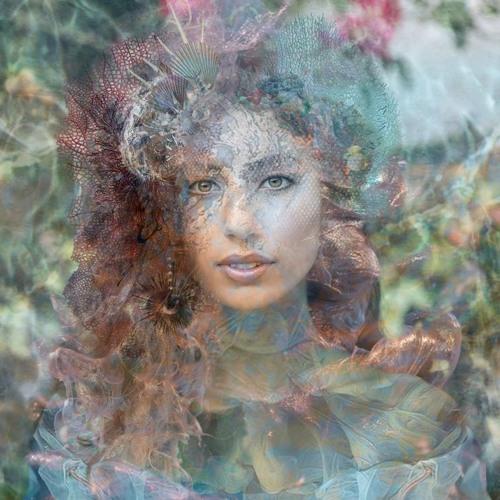 Liana Pearl's avatar