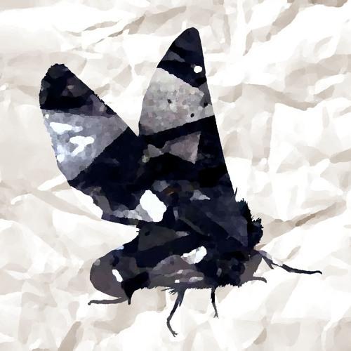 Magnetite Moth's avatar