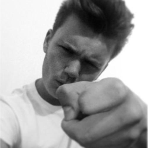Hugo Breysse's avatar