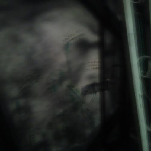 Beau Tyler HAWKINS's avatar
