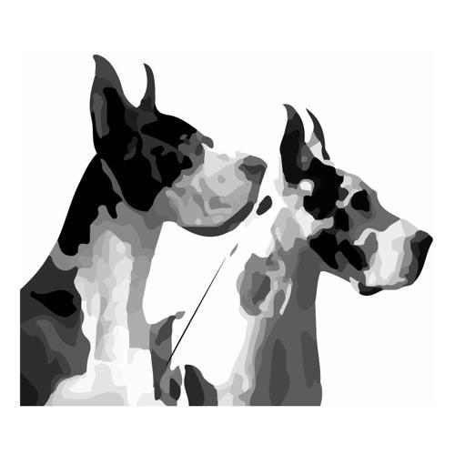 cdybro's avatar