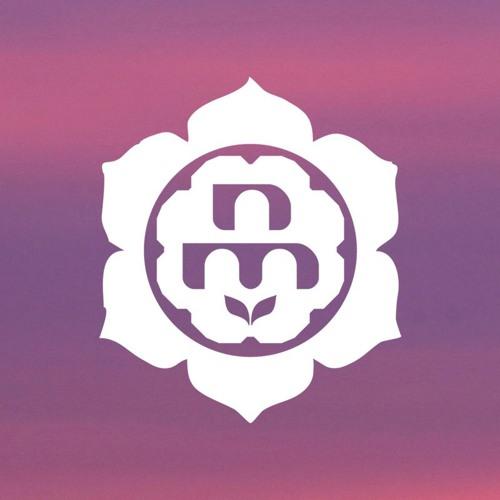 Noisy Meditation's avatar
