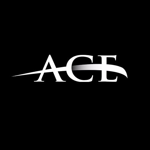 ACE Artist Management & Promotion Agency's avatar