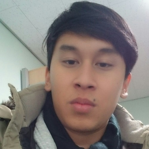 Dicky Muhammad Arifin's avatar