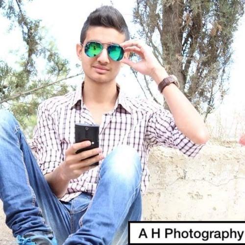 anas al-absah's avatar