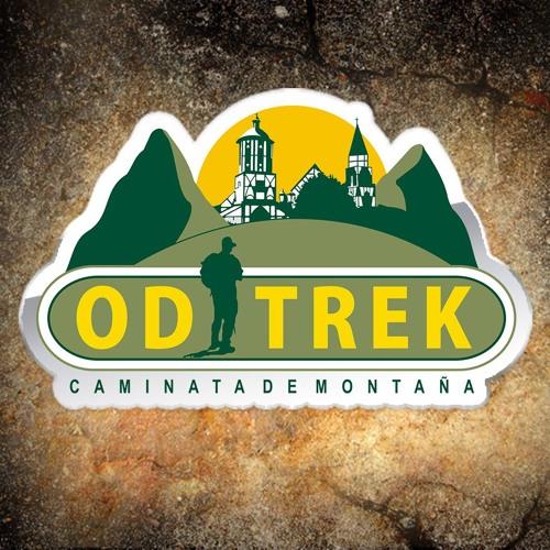 ODTREK's avatar