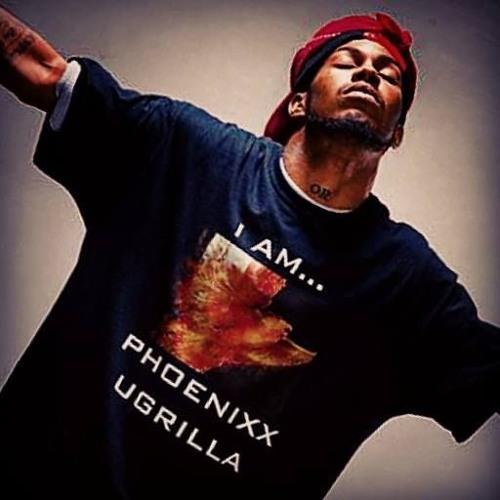 Phoenixx Ugrilla (LEGEND)MTM THE FAMILY INC.'s avatar