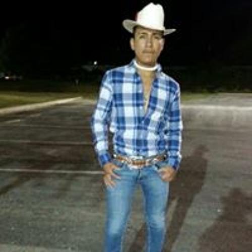 El Zorrillito Gonzalez's avatar