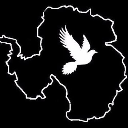 maxalpermusic's avatar