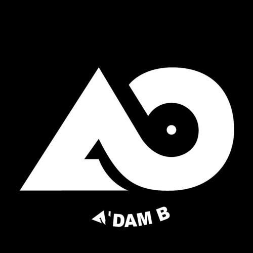 A'dam B's avatar