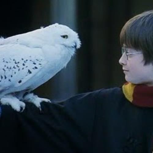 pippi the owl's avatar