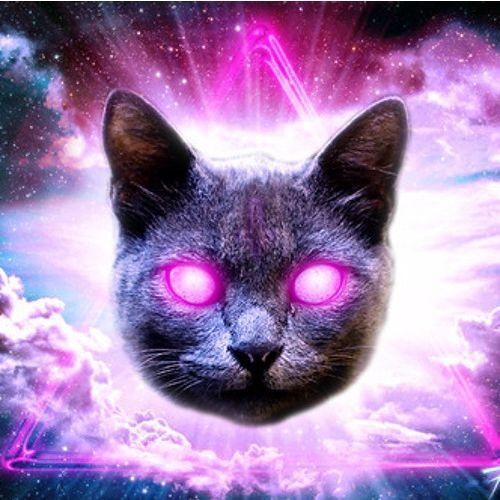 Tech Cat House's avatar