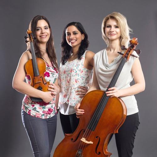 Vena Piano Trio's avatar