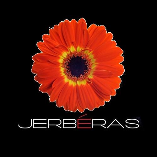 Jerbéras's avatar