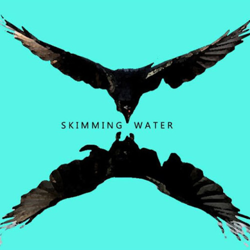 Skimming Water's avatar
