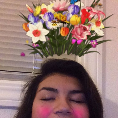 saltlaykasiti's avatar