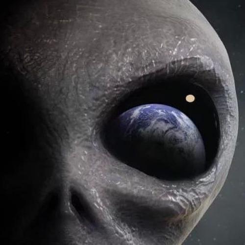 Camilo Maldonado's avatar