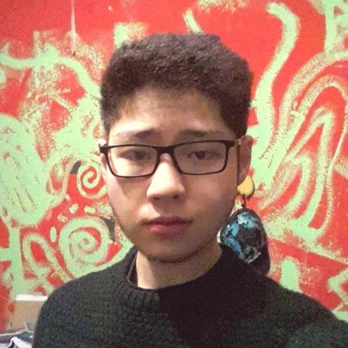 sprungzuverlässig95's avatar
