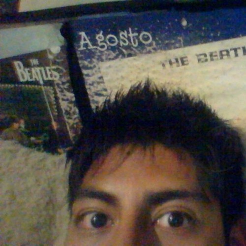 Max Miranda Bermudez's avatar