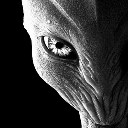 Future Productionz's avatar