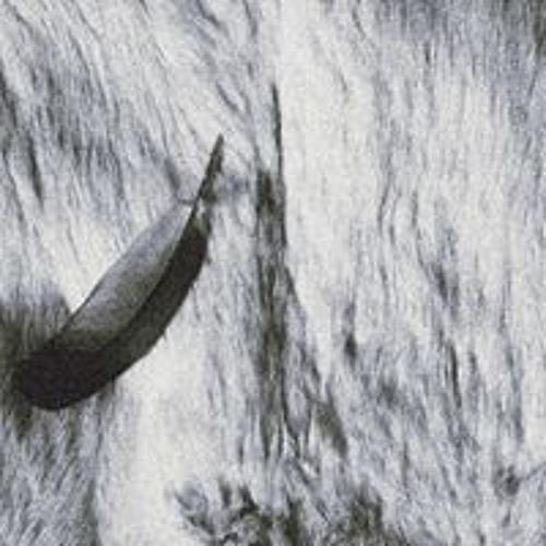 Lyrebird Hoax's avatar