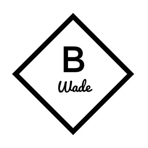 B Wade's avatar