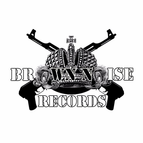 Brown Noise Records [Free Tunes]'s avatar
