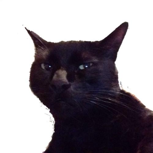 dasboots's avatar