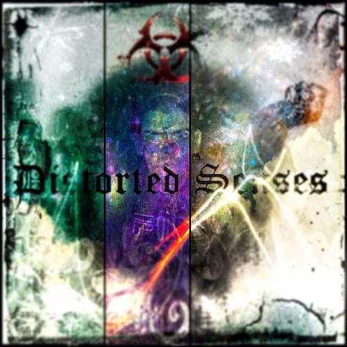 Distorted Senses's avatar
