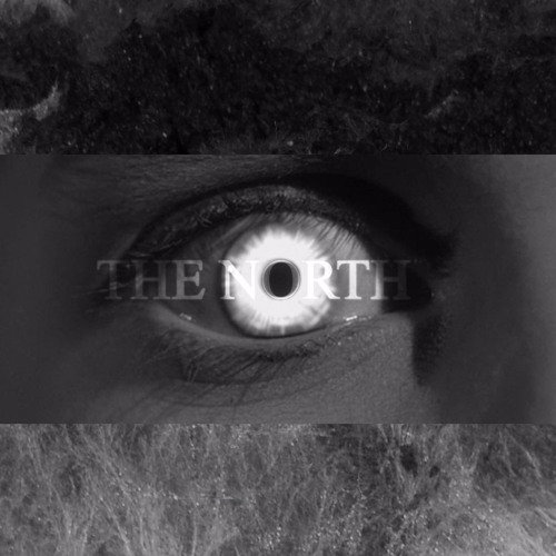 the north's avatar